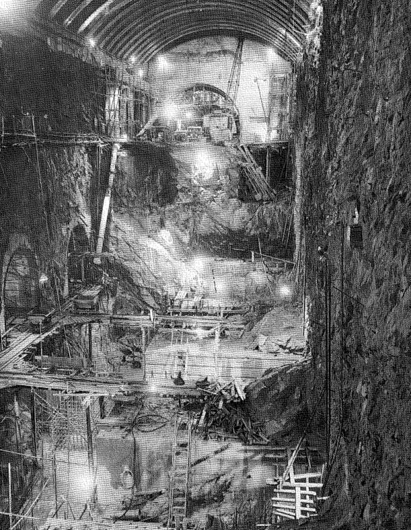 Plate 2. –